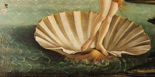 Venus in the Birdbath